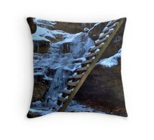 Bear Hollow - Ladders Throw Pillow