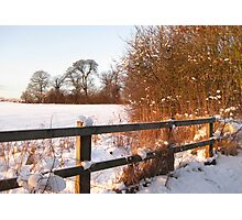 Snow & Sun Photographic Print