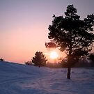 Winter Sunset by ienemien