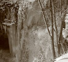 Half Frozen by Lynn  Gibbons