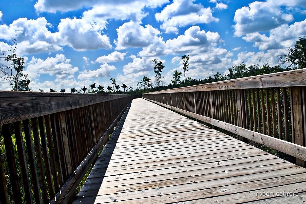 Long Nature Boardwalk by robert cabrera