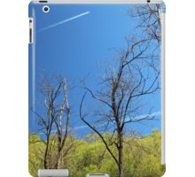 Air Pollution and Climate Change iPad Case/Skin