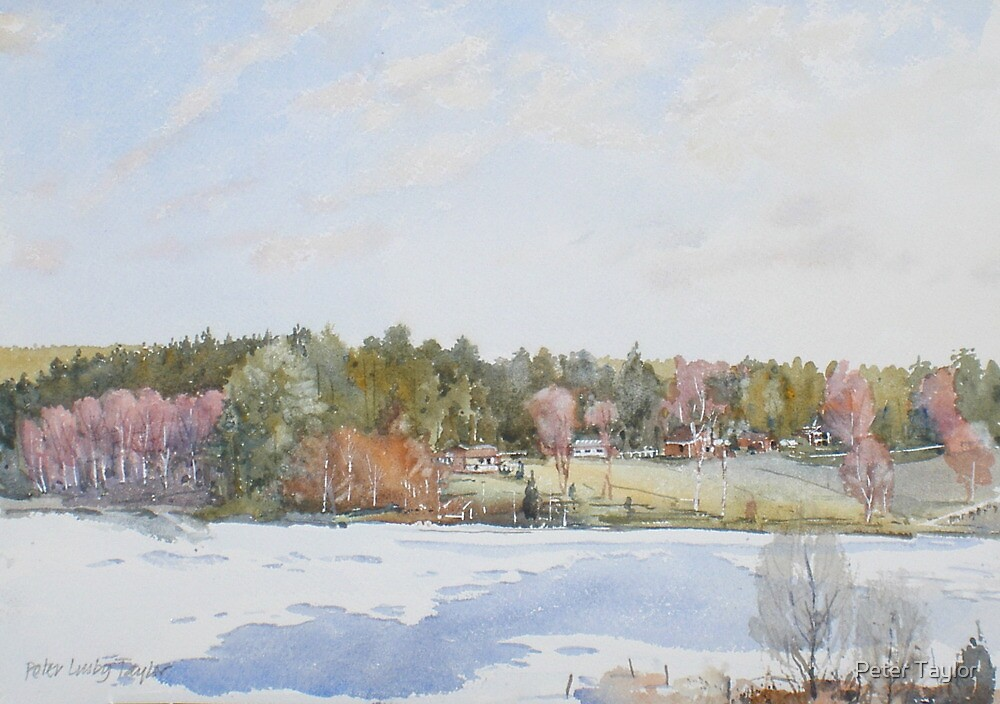 snow on the lake by Peter Lusby Taylor