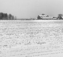 Snowy Farm by Chintsala