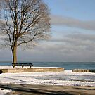 Lake Michigan in Winter by Susan Russell