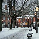Salem Commons in Winter II by Monica M. Scanlan