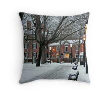 Salem Commons in Winter II Throw Pillow