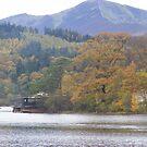 Autumn colours across Keswick by monkeyferret