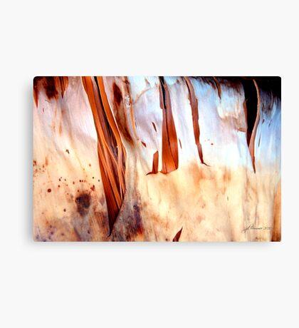 Fire Falls Canvas Print