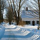 After the Snow Storm by Monica M. Scanlan