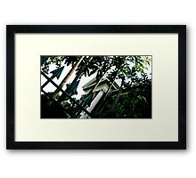 Haunted 03 Framed Print