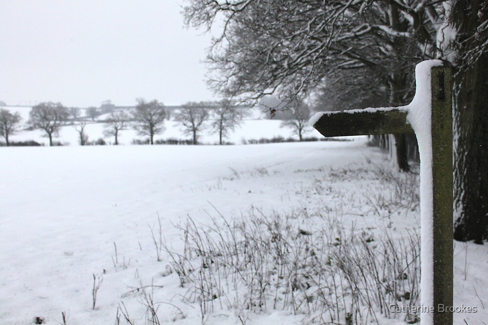 Snowy field by Catherine Brookes
