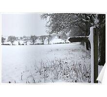 Snowy field Poster
