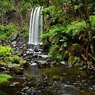 A World Away - Hopetoun Falls by Matt  Streatfeild