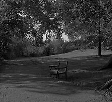 Relax....take a seat. by Gary Winters