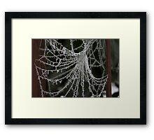 Icy web Framed Print
