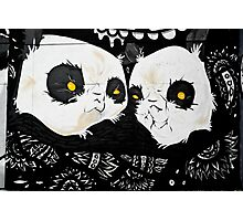 Graffiti pandas Photographic Print