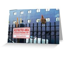 Guard on Duty Mallory Square Key West, Florida Greeting Card