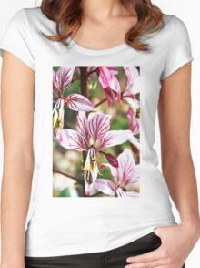 Lycoris, Peppermint Surprise Lily (Lycoris incarnata) Women's Fitted Scoop T-Shirt