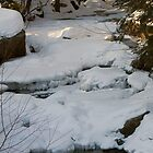 New Hampshire Winter Stream by Monica M. Scanlan