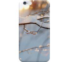 Winter flares iPhone Case/Skin