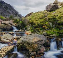Mountain Stream by Ian Mitchell