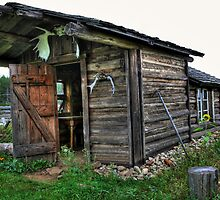 Sunflower cabin by tanmari