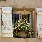 Pretty window, St Tropez by BronReid