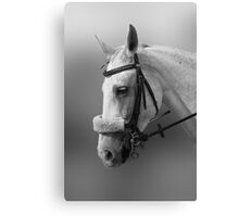 My old neddy! Canvas Print