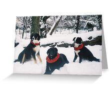 The Three Musketeers Greeting Card