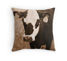 Don't hate me 'cause I'm beautiful... Throw Pillow