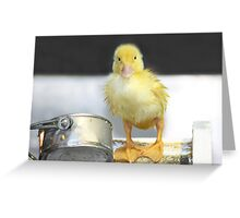 I'm Just Ducky! Greeting Card