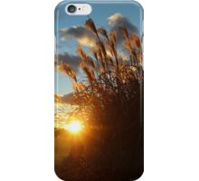 Sunset in the Ornamental Grass iPhone Case/Skin