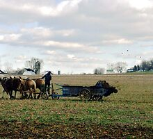 Farming with Real Horsepower on a Winter Day by Susan Russell