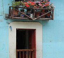 Door With Wood Balcony by rhamm