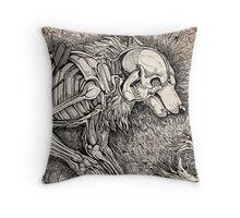 Origin  Throw Pillow