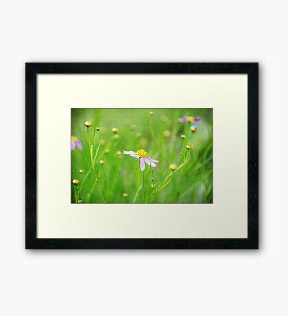 Textured flowers Framed Print