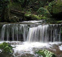 Watagan Waterfall 1 by Cheryl Parkes