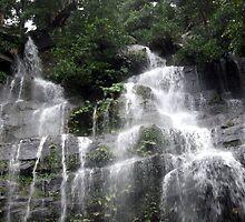 Watagan Waterfall 2 by Cheryl Parkes