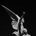Angel by raelynndesign