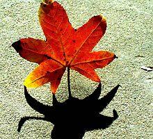 Leaf and Shadow by carol selchert