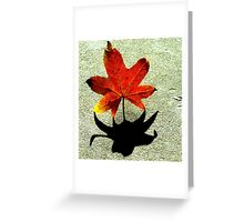 Leaf and Shadow Greeting Card