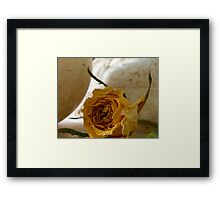 In the Shadows - Yellow Rose Framed Print