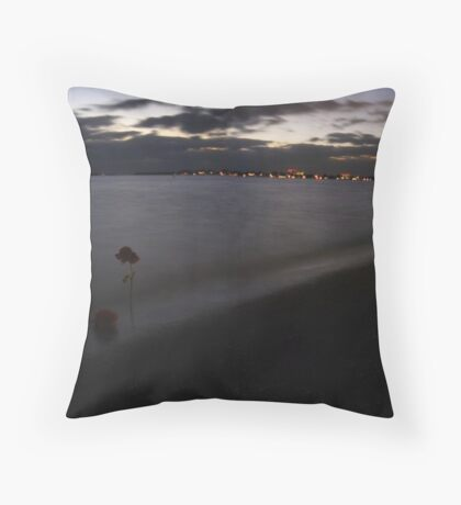 fROSEn in Florida Throw Pillow