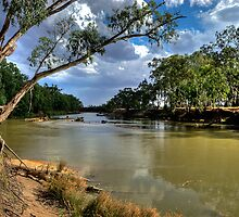 The 'Bidgee by GailD
