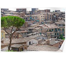 Siena Roofs in summer Poster