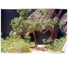 Uluru Cave Poster