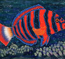 Postcards for the Reef 11: Harlequin Tuskfish by MiMiDesigns