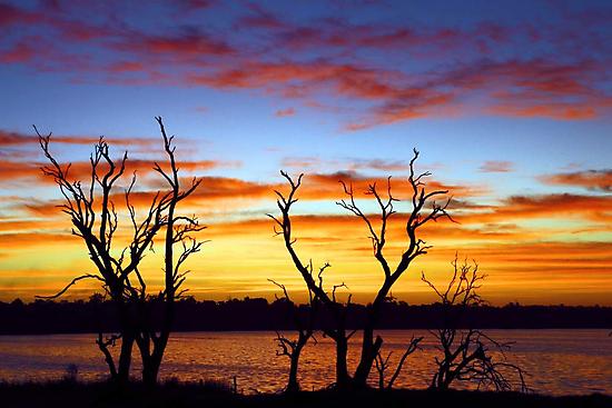 Yangebup Lake - Western Australia  by EOS20
