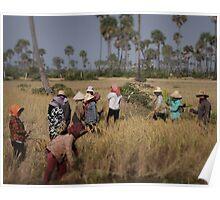 Women working in the field. Poster